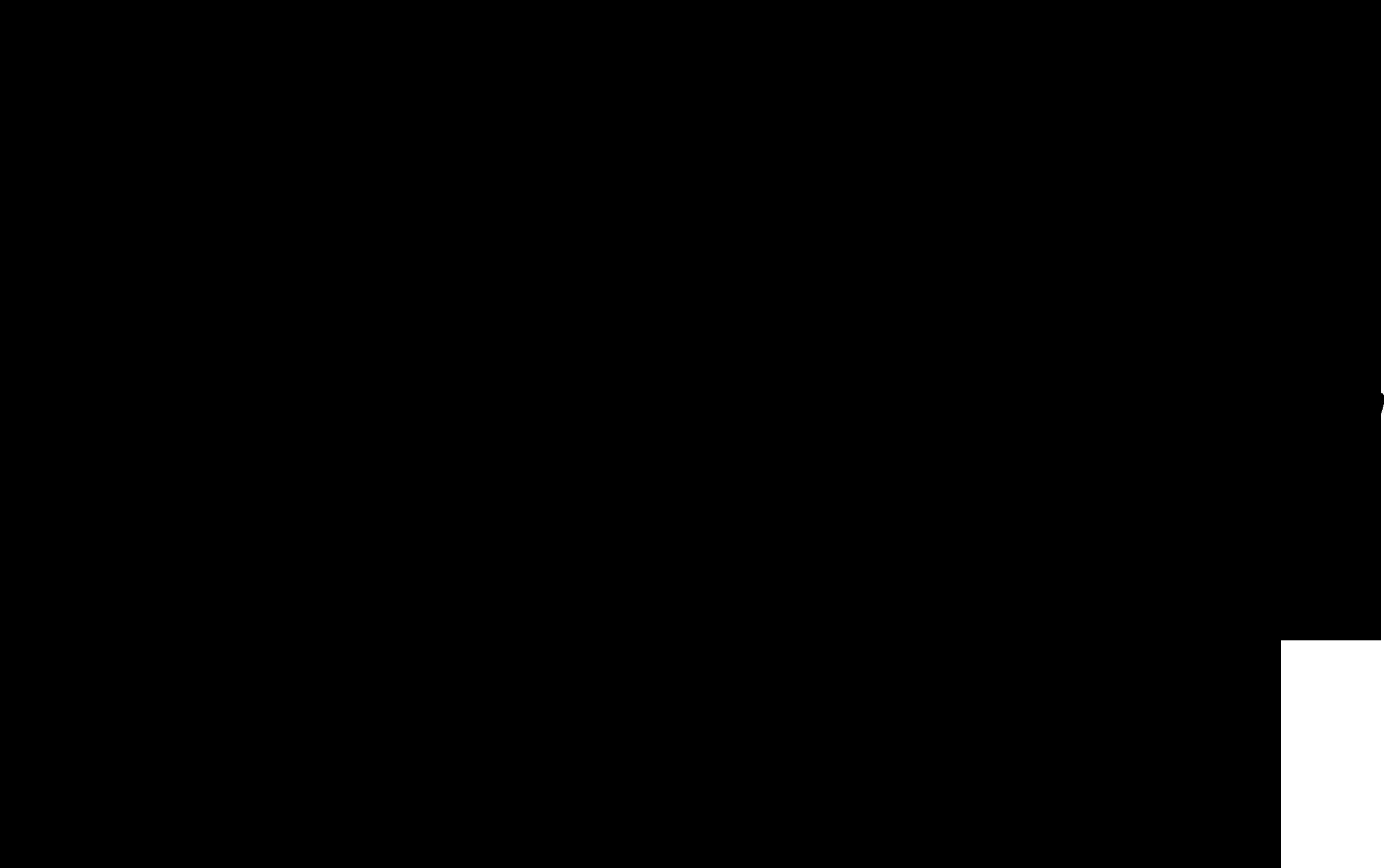 van-snelle-logo
