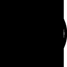 from-paradise-logo